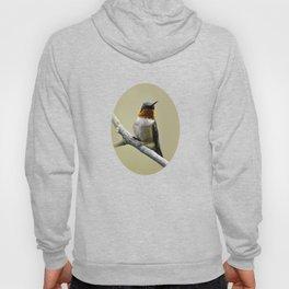 Hummingbird Portrait Hoody