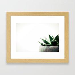 Simply Succulent Framed Art Print