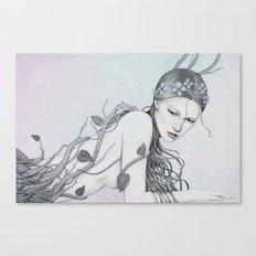 204 Canvas Print