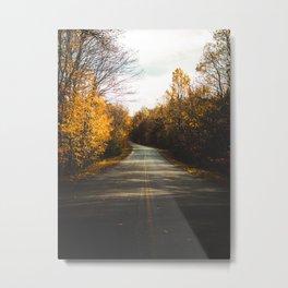 Fall road Metal Print