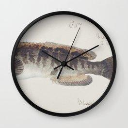 Antique fish Requiem shark drawn by Fe Clarke (1849-1899) Wall Clock