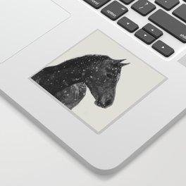 Horse Animal Photography Sticker
