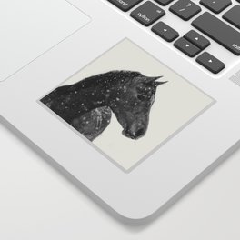 Horse Animal Photography Sticker