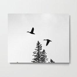 Couple of Ducks Metal Print