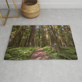 Walk In The Redwoods     7-29-17 Rug