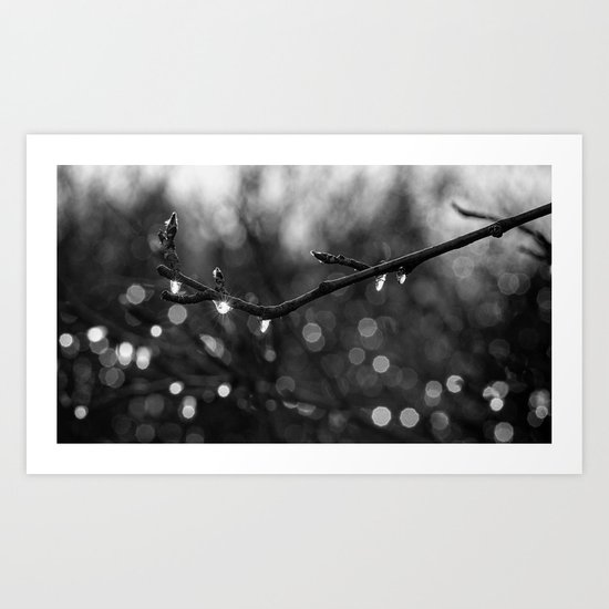 icy lights Art Print