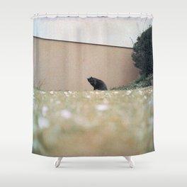 neat & tidy Shower Curtain