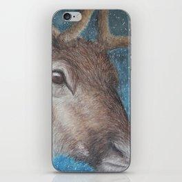 Reindeer (Rangifer tarandus) iPhone Skin
