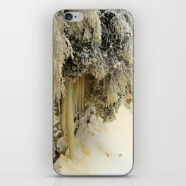 Ice Sculptures iPhone Skin
