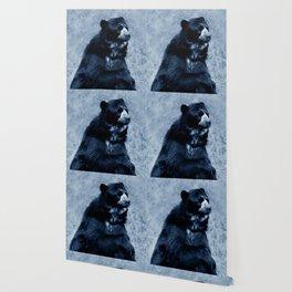 Black bear contemplating life Wallpaper