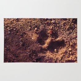 Cheetah Walk Rug