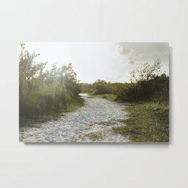 Sandy Path with Greenery Metal Print