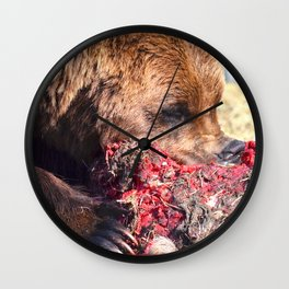 Hungry Alaskan Grizzly Bear - Eating Raw Meat Wall Clock