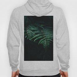 fern Hoody