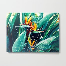Modern white geometric triangle tropical bird of paradise photography Metal Print