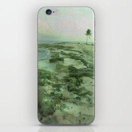 Tip of Paradise iPhone Skin