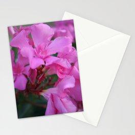 Pink Oleander Flower  Stationery Cards