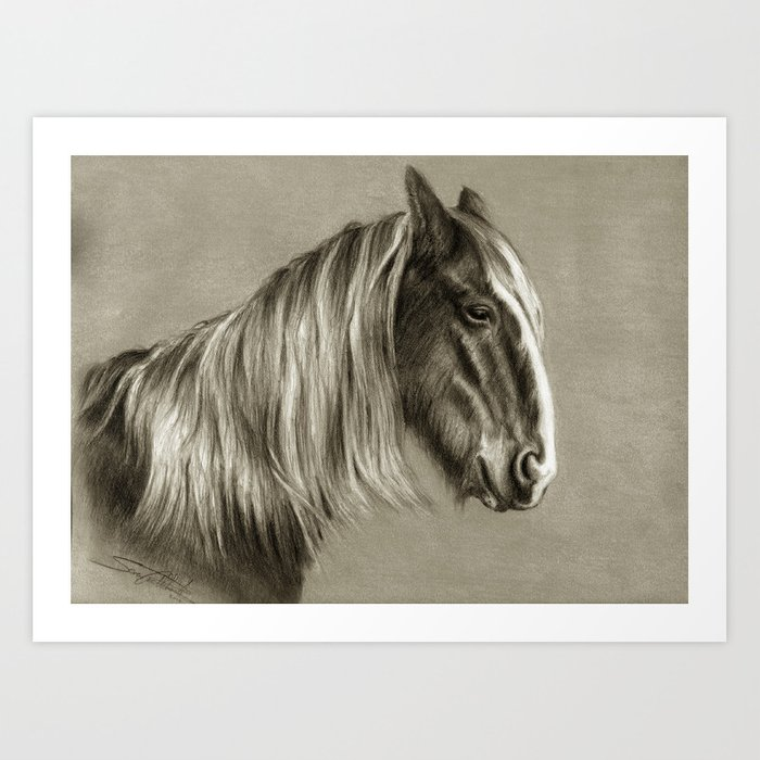 Clydesdale in Retirement Art Print