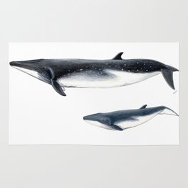 Bryde´s whale and baby whale Rug