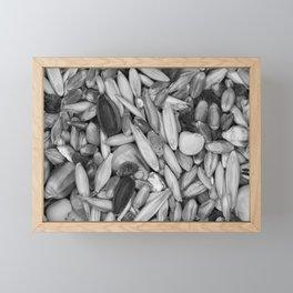 Bird Seeds Pattern Photograph Monochrome Framed Mini Art Print