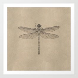 Dragonfly Fossil Dos Art Print
