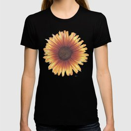 Daisies for Wrapping Paper - Simple T-shirt