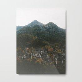 Mt Exmouth Metal Print