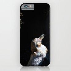 Spheniscus Humboldti III iPhone 6s Slim Case