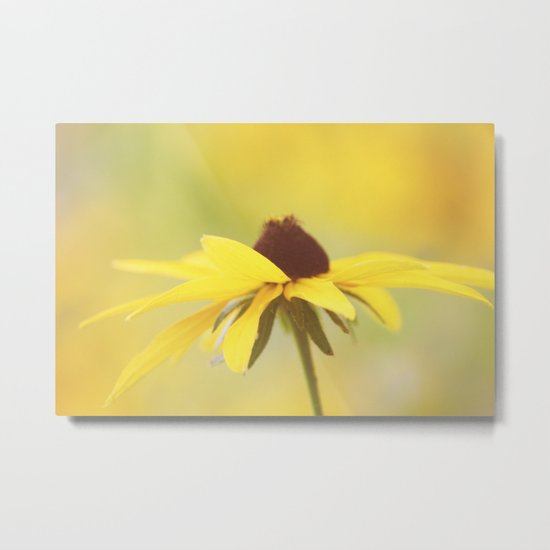 Amarillo Haze Metal Print