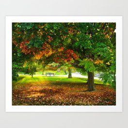 Changing colors of fall. Art Print