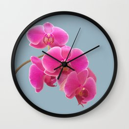 Orchids Photo to Paint on Blue Wall Clock