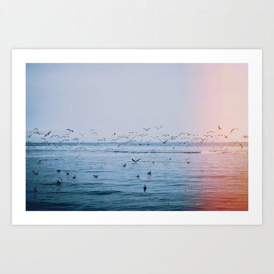 Ocean Birds Art Print