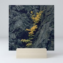 Manifesting HOPE in the Midst of 'Rocky' Places Mini Art Print