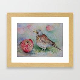 Fieldfare Bird with red apple Wildlife Songbird Fall Illustration Watercolour Painting Bird decor Framed Art Print