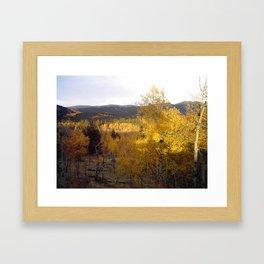 Evening Shadows on a Golden Mountainside Framed Art Print