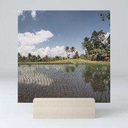 Ricefield paradise Mini Art Print