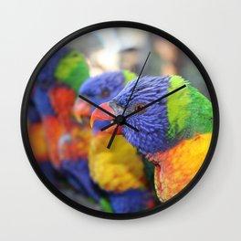 Australian Rainbow Lorikeets Wall Clock