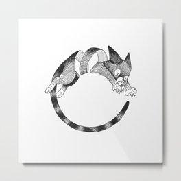 Cat Loop Metal Print