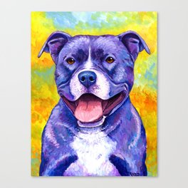 Colorful American Pitbull Terrier Dog Canvas Print