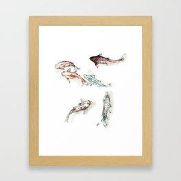 Koi Fish Watercolour Framed Art Print