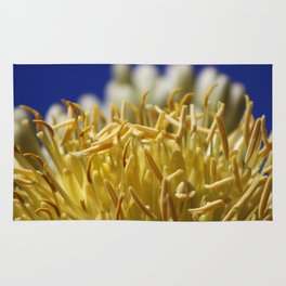 Butter Yellow Stamen of Century Plant on Ocean Blue Rug