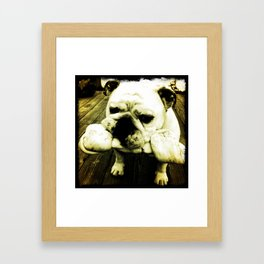 Rupert Framed Art Print