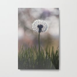 dandelion....i wish Metal Print