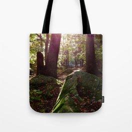 Sun Shines Through the Trees Tote Bag