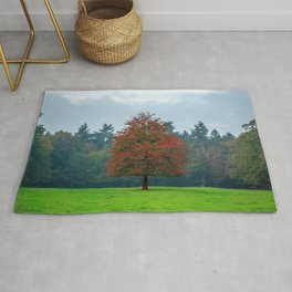 Lonely Little Red Tree In Wood Clearing Ultra HD Rug