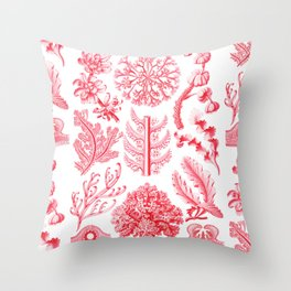Ernst Haeckel - Florideae Throw Pillow