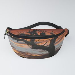 The Vines in Winter Fanny Pack