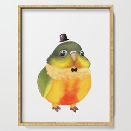 Fanciful Conure with Hat Serving Tray