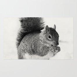 Squirrel Animal Photography Rug