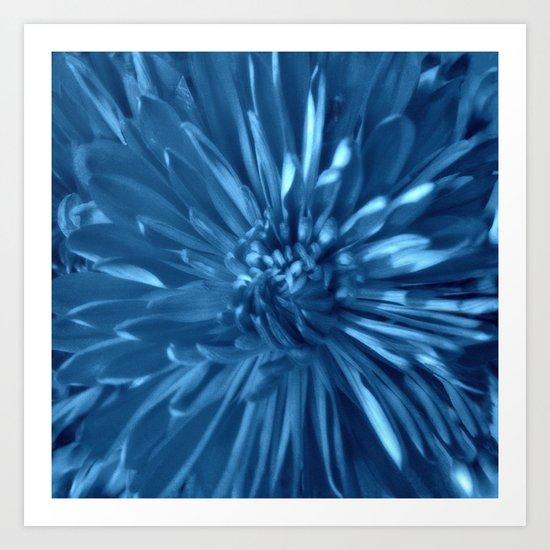 Flower   Flowers   Sky Blue Mums Art Print